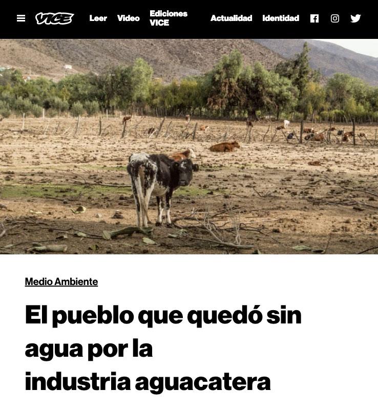 El pueblo que quedó sin agua por la industria aguacatera